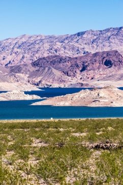 1002 Lake Meade Portrait