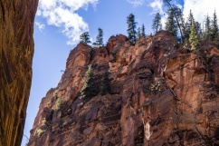 1023a Looking up at Zion