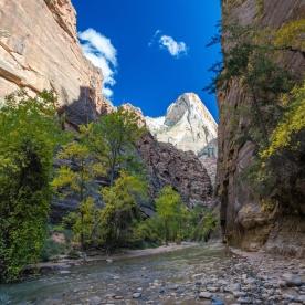 1026 Zion Utah Landscape