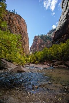 1027 Zion Utah Landscape