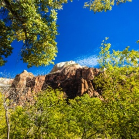 1031 Zion Utah Landscape