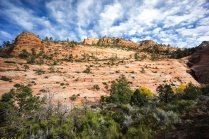 1033 Zion Utah Route Out Landscape
