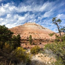 1034 Zion Utah Route Out Portrait
