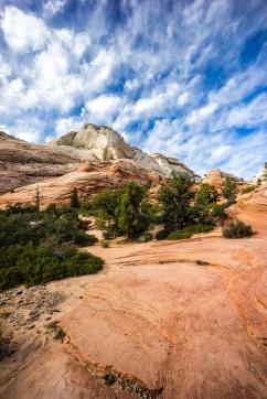 1035 Zion Utah Route Out Portrait 11