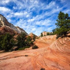 1036 Zion, Utah Route Out Landscape