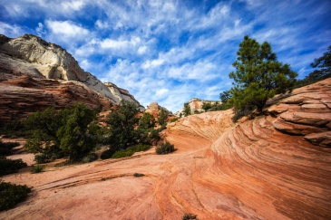 1036 Zion Utah Route Out Landscape 12