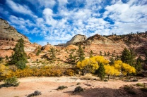 1037 Zion Utah Route Out Landscape 13