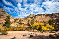1037 Zion Utah Route Out Landscape 13