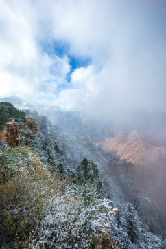 1041 Misty View of the Grand Canyon