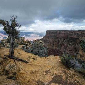 1043 East Entrance Grand Canyon