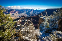 1047 Grand Canyon Winter Scene