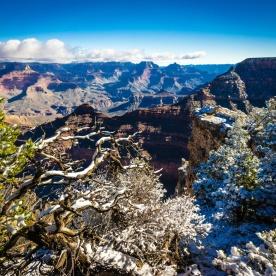 1047 Grand Canyon Winter Scene