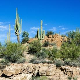 1058 Arizona