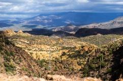 1060 On the Road to Canyon Lake, Arizona