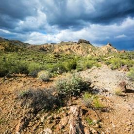1064 Near Apache Junction