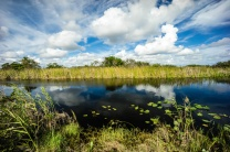 1068 Everglades 2 Tamiami Trail