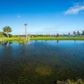 1072 Daytona Shores Florida Landscape