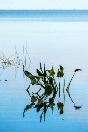 1074 Florida Lake