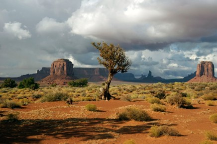 The wonder of Monument Valley