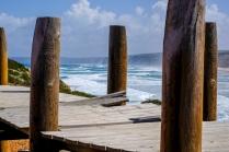 1500 Atlantic Coast Boardwalk _DSCF0376