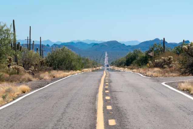 1500 US80 Near Tucson 021117 DSC00404.jpg-00404