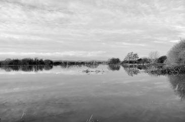 1800 2 River Arun B&W DSC_2763 2