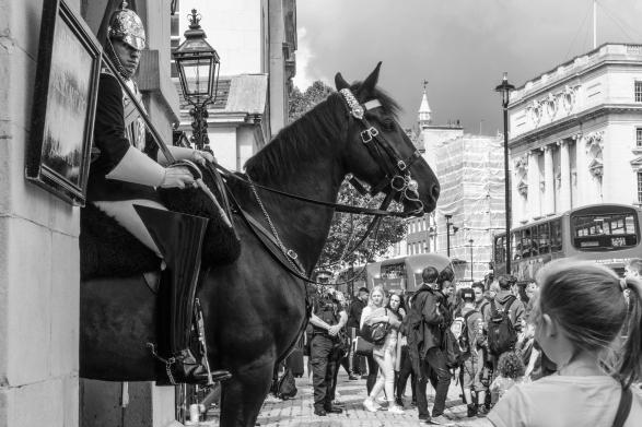 1800 Horseguard BW