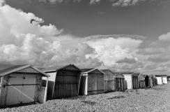 1800 Lancing Beach Huts and Gull 3 B&W_MKH5507