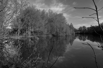 1800 Shillinglee Reflections BW DSC_4059