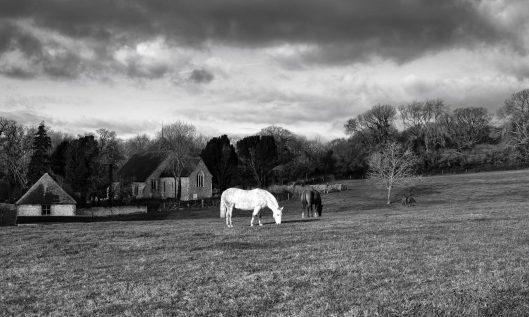 cropped-1800-three-horses-and-a-church-251218-dscf7002.jpg