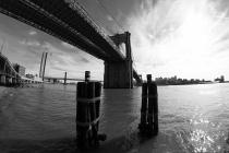 1800 Brooklyn Bridge 081118_DSF6528