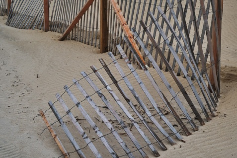 1800 Fencing on the beach_DSF6616