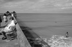 1800 Naples Dolphin 181118_DSF6758