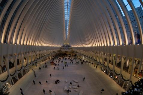 Bonefish Building, Ground Zero, New York