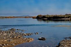 1800 Colorado River near Parker 2 220120_DSF1323