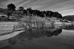 Lake Henshaw reflections