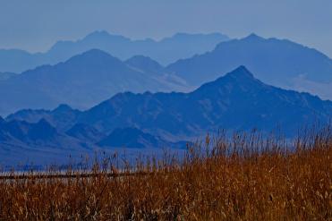 1800 Mohave Desert Landscape 130120_DSF0970