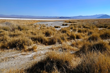 1800 Mohave salt lake bed 130120_DSF0972