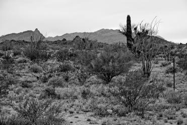 Apache country near Tucson, Arizona