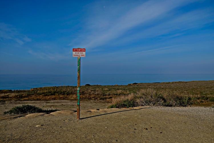 1800 Pacific Coast 150120_DSF1027