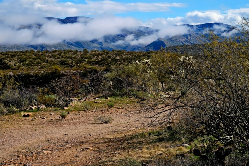 1800 Tucson to Globe 1 170120_DSF1121