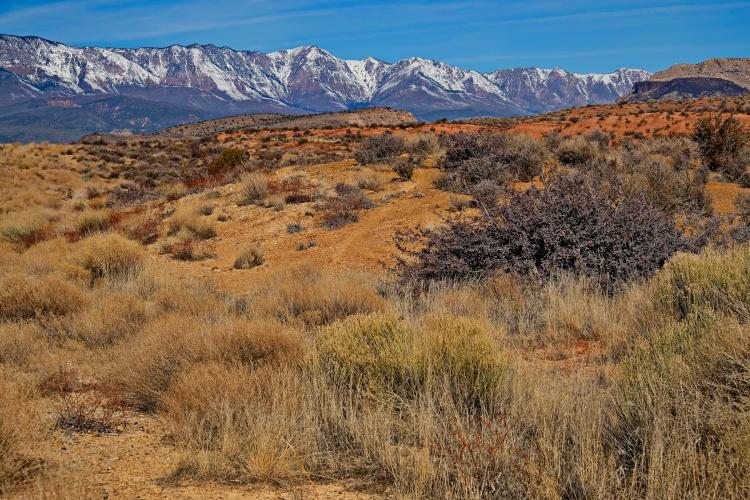 1800 Utah Mountains 250120_DSF1455