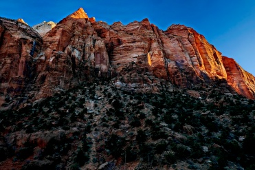 The towering canyon walls at Zion National Park