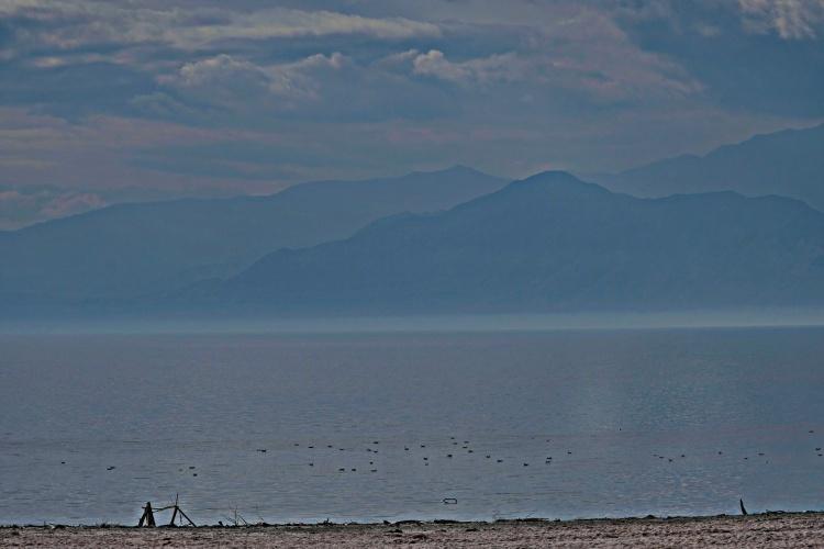 1800 The Salton Sea 210120_DSF1307
